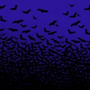 Halloween Black Bats