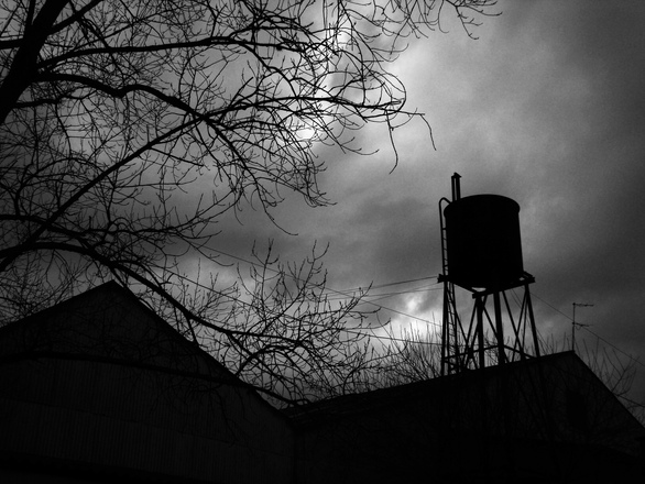 Photo by Blas Lamagni, via Free Images