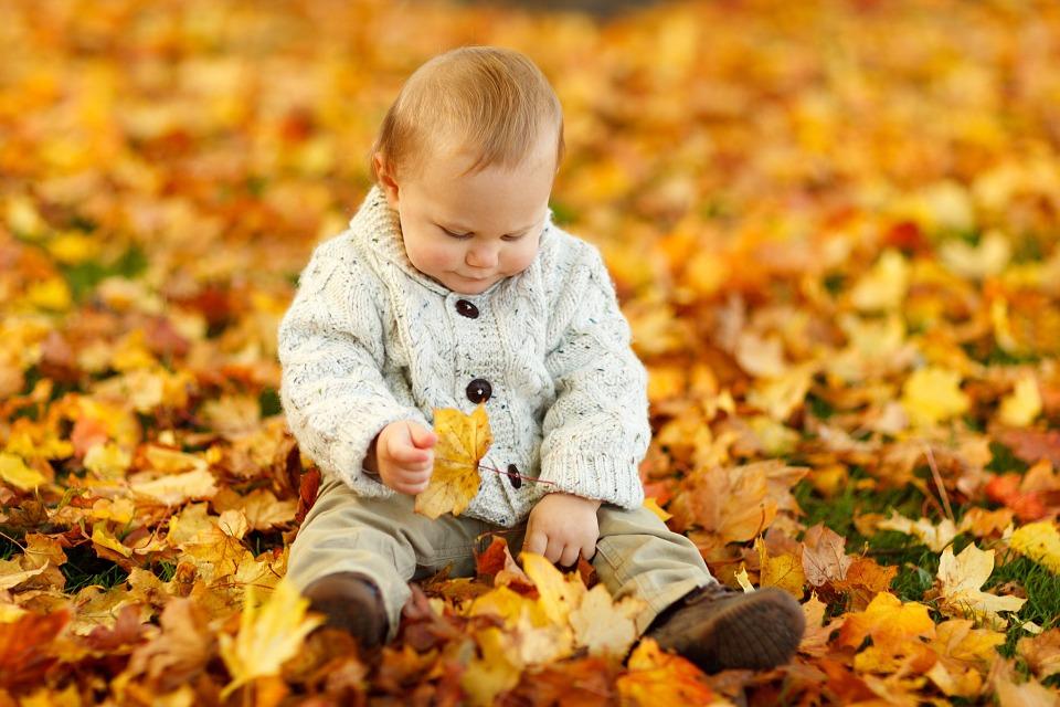 Photo by PublicDomainPictures, via Pixabay | https://pixabay.com/en/autumn-fall-baby-boy-child-cute-165184/
