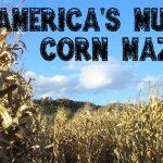 best-corn-mazes-NOYEAR